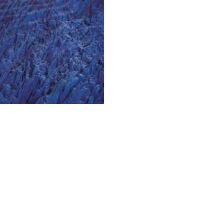 Shchavlinskyi singles & EP